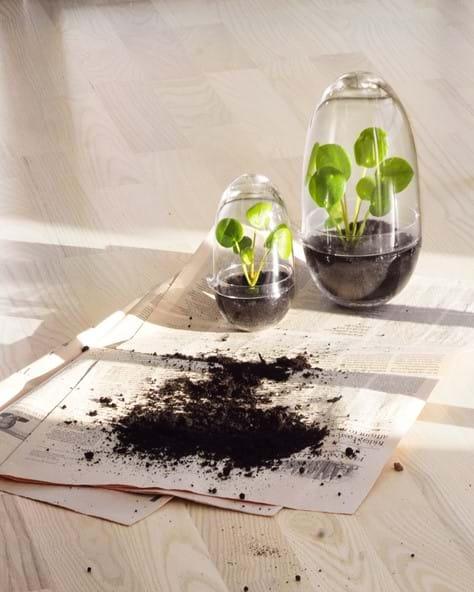 a49b66568c63 Grow Greenhouse - Miniväxthus i tre storlekar | Sommarpresenter för ...